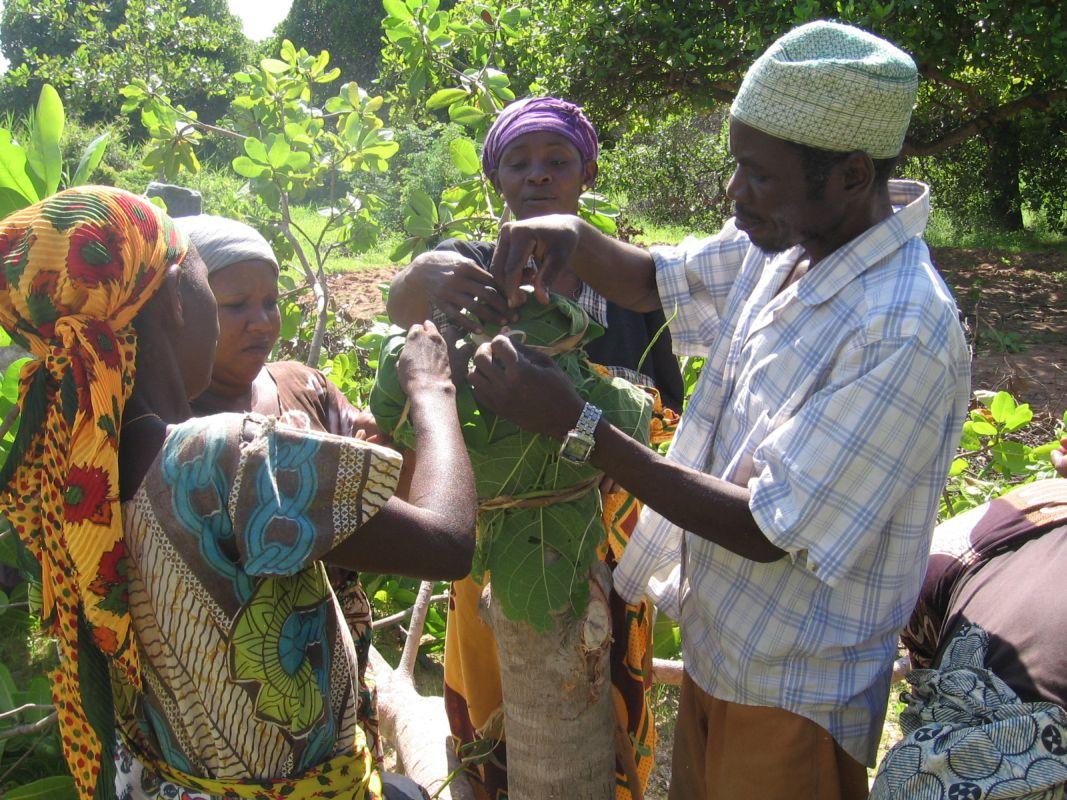 Land- & Forstwirtschaft, Fischerei